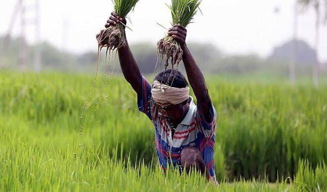 कृषि अधिनियम : किसानों की शंकाओं का सरकार करे तुरंत निराकरण