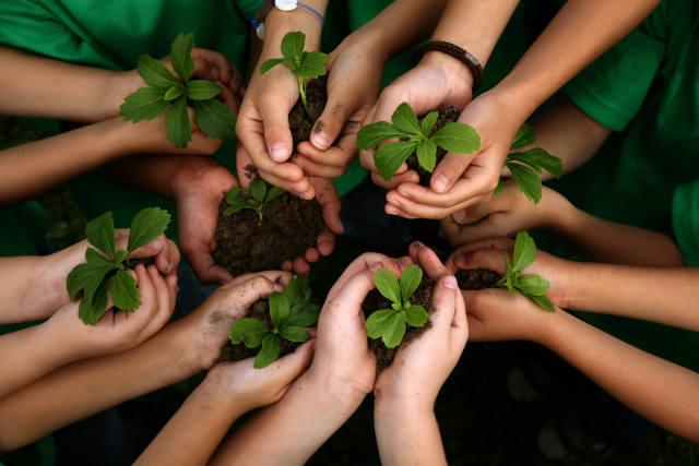 नई पीढ़ी को पर्यावरण का महत्व समझाना आवश्यक है
