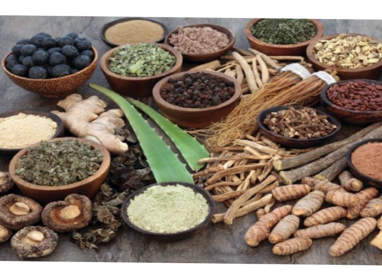 Ayurveda – the Most Ancient and Holistic Health Science