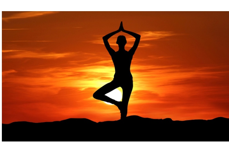 Yoga and Dhyana (Meditation)