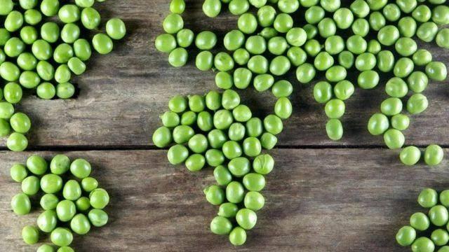 शाकाहार अपनाकर भी पृथ्वी को तपने से बचाया जा सकता है...
