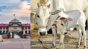 गाय को राष्ट्रीय पशु क्यों घोषित किया जाना चाहिए?